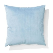 Kmart Velvet Cushion